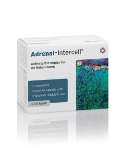 Adrenal-Intercell 120 kapsułek